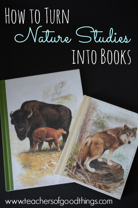 How to Turn Nature Studies into Books www.joyinthehome.com.jpg