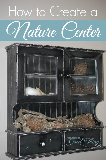 How to Create a Nature Center | www.joyinthehome.com