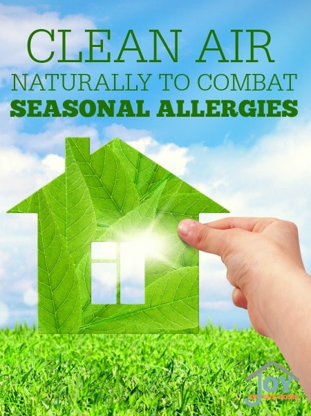 Clean Air Naturally to Combat Seasonal Allergies