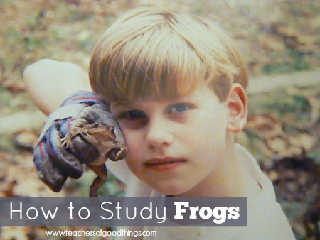 How to Study Frogs