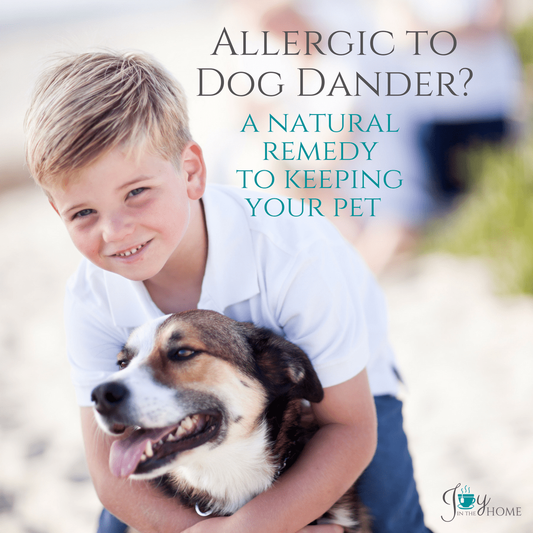 Allergic to Dog Dander? A Natural Remedy to Keeping Your Pet